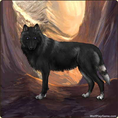 Wolf Play - Free Wolf Game! | Wolf Breeding Game | Wolf SIM Game